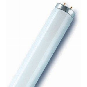18 Watt T8 Cool White (L18/840) Fluorescent Tube (2FT)
