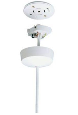 Plug In 3 Or 4 pin Ceiling Rose Prewired c/w 2m Of 4 Core Flex