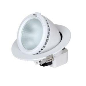 36W 4000K LED Adjustable Downlight